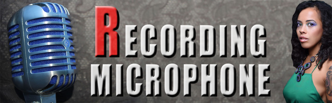 Top rated recording microphones