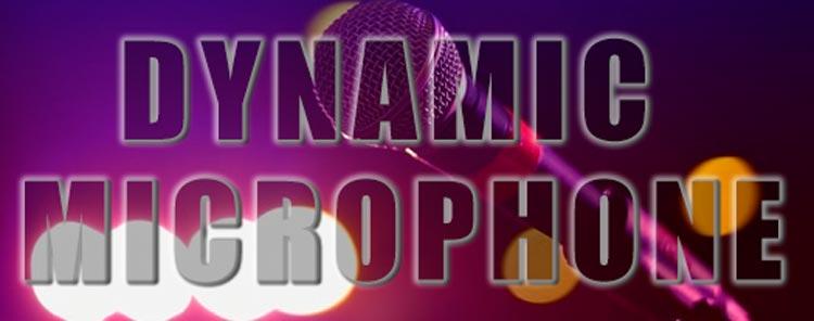 Dynamic Microphone Test